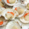 Go and get Shucked – in Rye Bay…