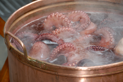 Boiled Octopus